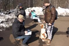Эксперт делает описание собак