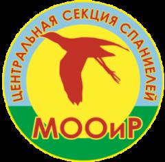 Русский охотничий спаниель - Центральная секция спаниелей МООиР